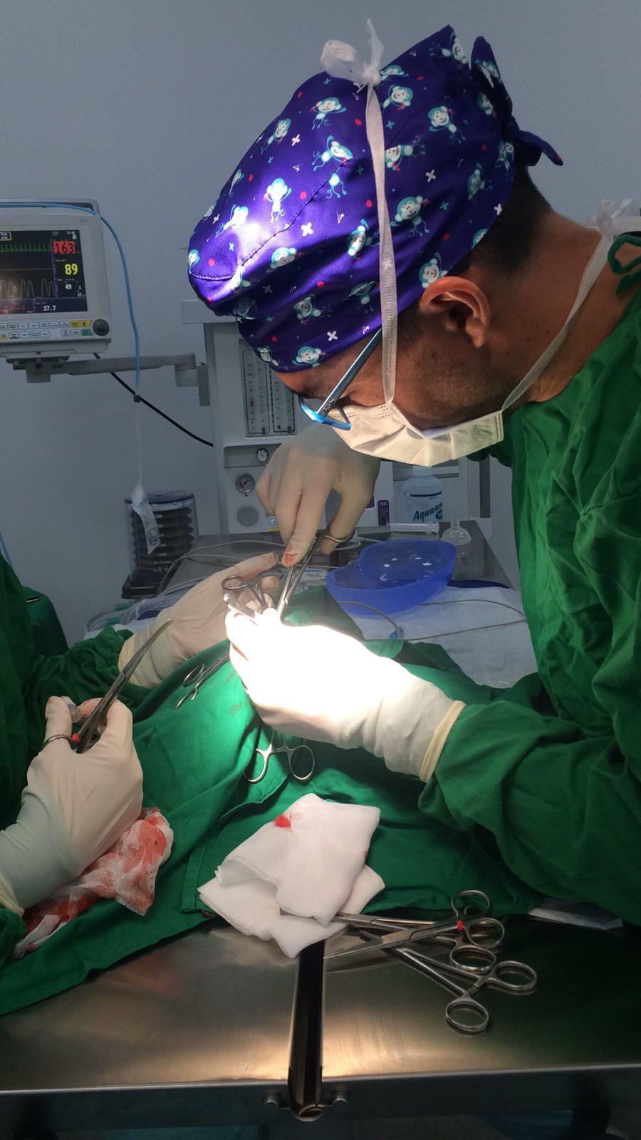 ovariectomia