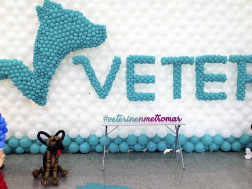 Centro-Veterinario-Veterin-Inauguracion-Metromar29